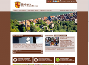 Screenshot der Demo-Website